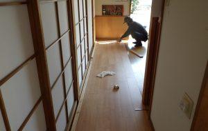 床板改修工事